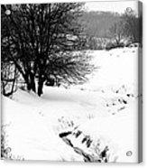Snowy Stream Acrylic Print by Alexandra  Rampolla