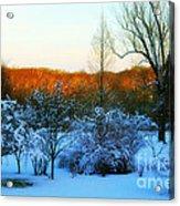 Snowy Trees In December Twilight - Pearl S. Buck Homestead Acrylic Print