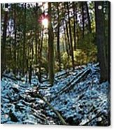 Snowy Valley Acrylic Print