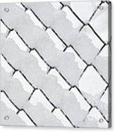 Snowy Wire Netting Acrylic Print