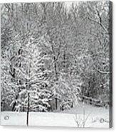 Snowy Woodland Acrylic Print