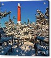 Snowy Woods At Barnegat Light Acrylic Print