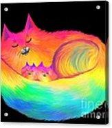 Snuggle Cats Acrylic Print