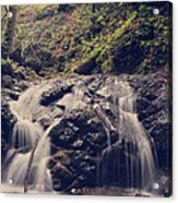 So Easy To Fall Acrylic Print by Laurie Search