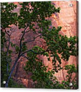 So Zion 3 Acrylic Print