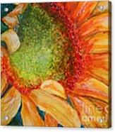 Soaking Up The Sun Acrylic Print by Terri Maddin-Miller