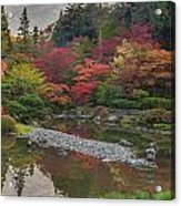 Soaring Fall Colors In The Arboretum Acrylic Print