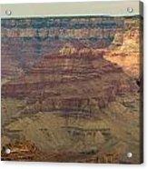 Soaring Through The Canyons Acrylic Print