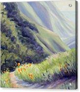 Soberanes Canyon  Acrylic Print