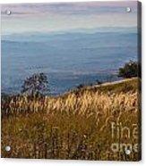 Sofia Valley From Vitosha Mountain October Early Twilight Acrylic Print