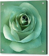 Soft Emerald Green Rose Flower Acrylic Print by Jennie Marie Schell