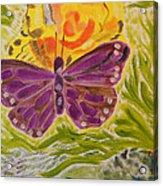 Soft Flutters Acrylic Print