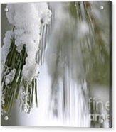 Soft Ice Acrylic Print