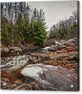 Soft Maple Water Fall Acrylic Print