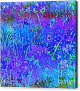 Soft Pastel Floral Abstract Acrylic Print