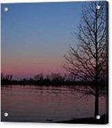 Soft Pink Morning Acrylic Print