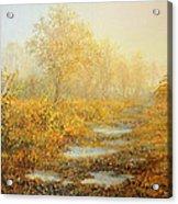 Soft Warmth Acrylic Print by Kiril Stanchev
