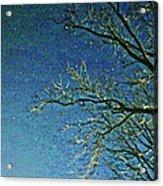 Solemn Sky Acrylic Print