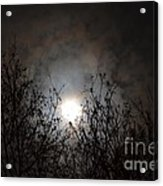 Solemn Winter's Moonlight Acrylic Print