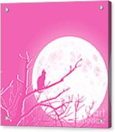 Solitary Pink Background Acrylic Print