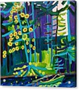 Solitude At Massapoag Lake Acrylic Print
