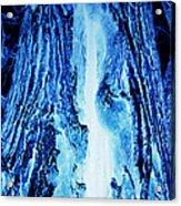 Solo Blue Acrylic Print