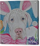 Some Bunny Says Spring Has Sprung Acrylic Print