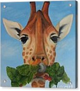 Someone Is Eating My Garden Acrylic Print by Pam Fries