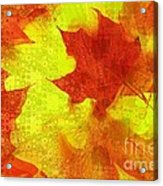 Something Like Autumn Acrylic Print