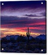 Sonoran Desert Skies  Acrylic Print