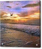 Soothing Sunrise Acrylic Print by Betsy Knapp