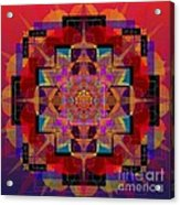 Sophia 2013 Acrylic Print
