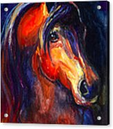 Soulful Horse Painting Acrylic Print