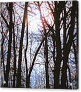 Soulshine Acrylic Print
