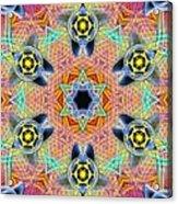 Source Fabric K1 Acrylic Print