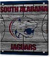 South Alabama Jaguars Acrylic Print