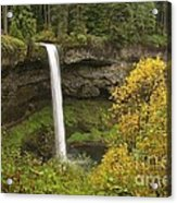 South Falls In Autumn Acrylic Print