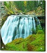 South Fork Falls  Acrylic Print