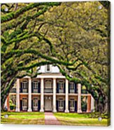 Southern Class Acrylic Print by Steve Harrington