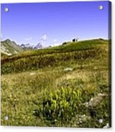 Southern France The Alps Acrylic Print