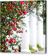 Southern Home - Digital Painting Acrylic Print