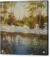Southern Landscapes   Acrylic Print