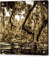 Southern Living Acrylic Print
