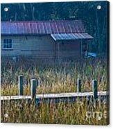 Southern Marsh Acrylic Print