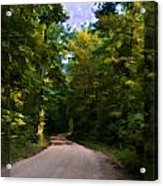 Southern Missouri Country Road I Acrylic Print