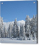 Southern Oregon Forest In Winter Acrylic Print