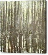 Southern Swamp Acrylic Print