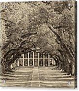 Southern Time Travel Sepia Acrylic Print