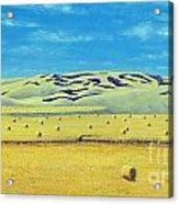 Southwest Sask. Acrylic Print