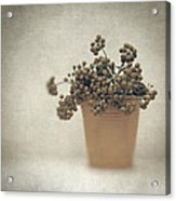 Souvenirs De Demain Acrylic Print